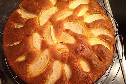 Apfelkuchen schnell und fein 28