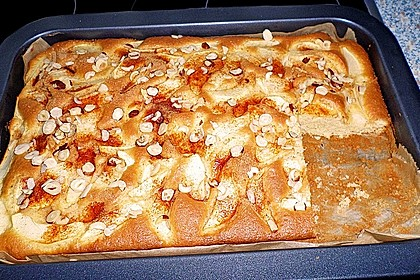 Apfelkuchen schnell und fein 199