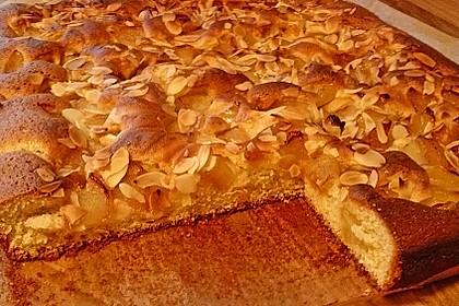 Apfelkuchen schnell und fein 22