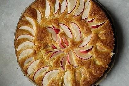 Apfelkuchen schnell und fein 14