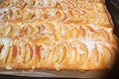 Apfelkuchen schnell und fein 175