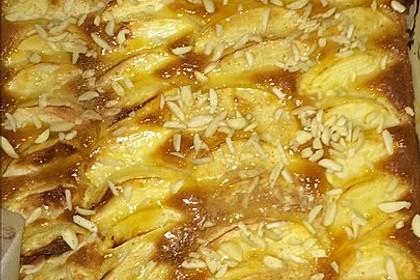 Apfelkuchen schnell und fein 133