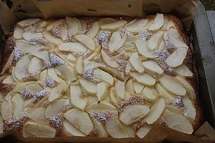 Apfelkuchen schnell und fein 194
