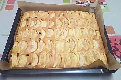 Apfelkuchen schnell und fein 42