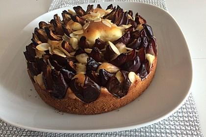 Zwetschgenkuchen mit Quark 2