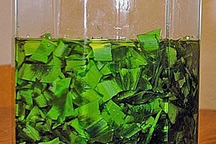 Bärlauch - Öl 1