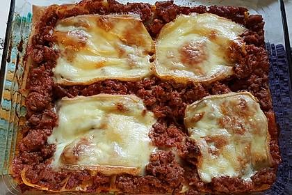 Idiotensichere Lasagne 23