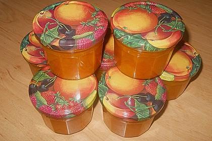 Aprikosenmarmelade 5