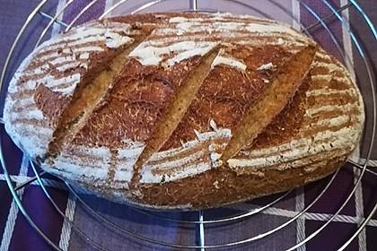 Schnelles Dinkel - Buchweizen - Brot 6