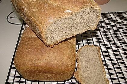 Schnelles Dinkel - Buchweizen - Brot 40