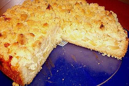 Apfel - Streuselkuchen mit Vanille - Schmand 14