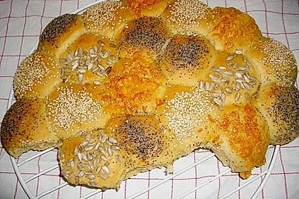 Brötchensonne mit ca. 50 Brötchen 73
