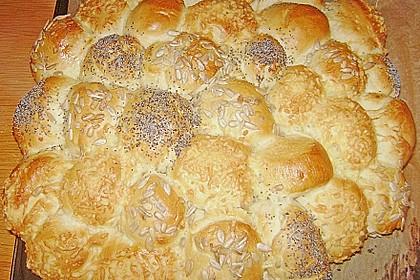 Brötchensonne mit ca. 50 Brötchen 158