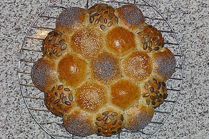 Brötchensonne mit ca. 50 Brötchen 8