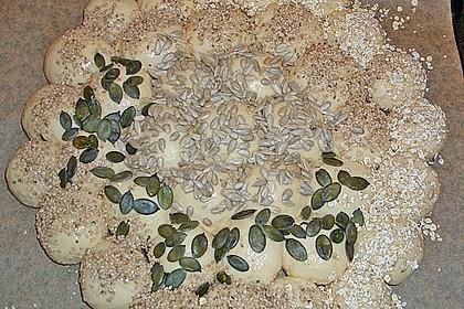 Brötchensonne mit ca. 50 Brötchen 227