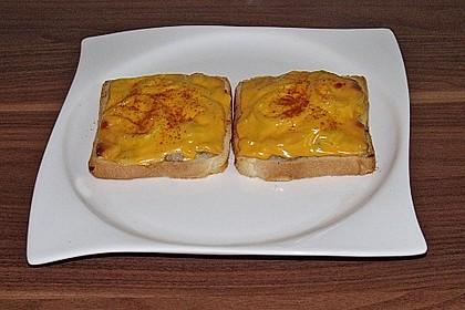 Bratwurst - Toast 7