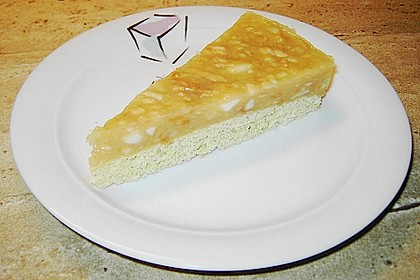 Apfel Vanille Kuchen 1