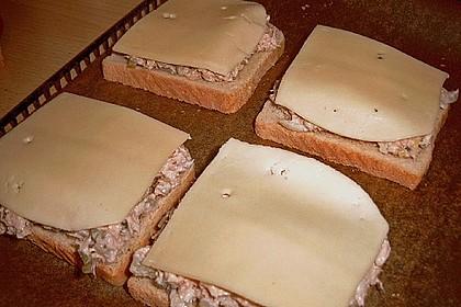Thunfisch - Toast 2