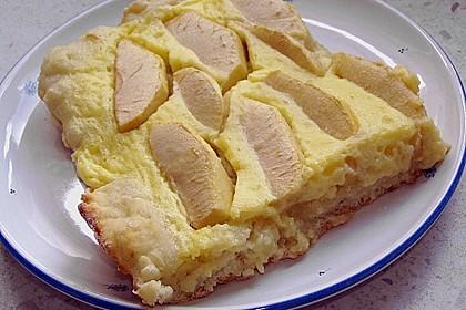 Apfelblechkuchen mit Pudding 1