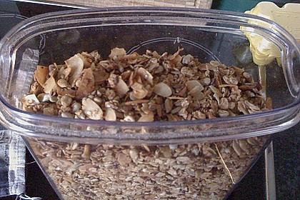 Granola Müsli selbstgebacken 28