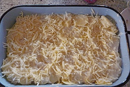 Feines Kartoffelgratin 47