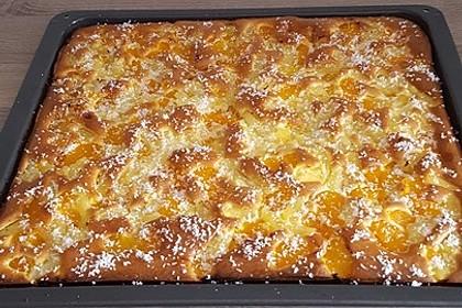 Ananas - Mandarinen - Blechkuchen 10