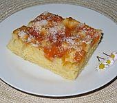 Ananas - Mandarinen - Blechkuchen (Bild)