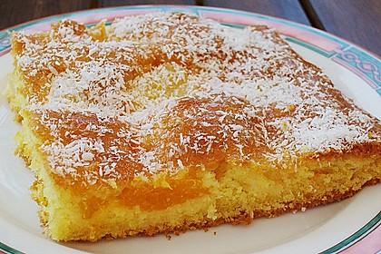 Ananas - Mandarinen - Blechkuchen