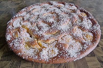 Ananas - Mandarinen - Blechkuchen 9