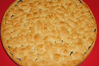 Mohn-Pudding-Kuchen 157