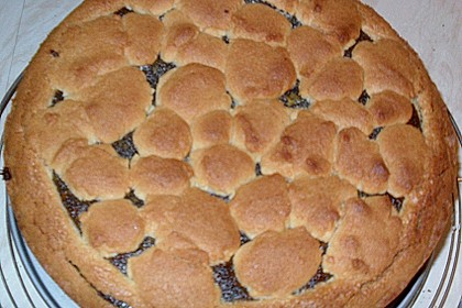 Mohn-Pudding-Kuchen 159