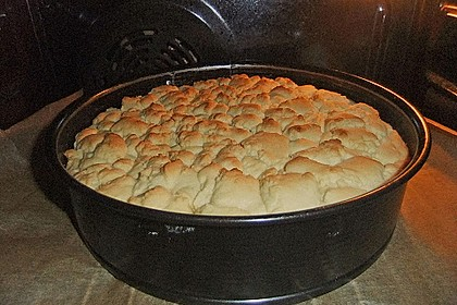 Mohn-Pudding-Kuchen 176