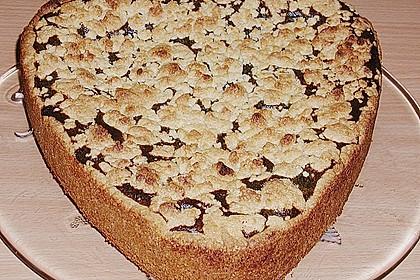 Mohn-Pudding-Kuchen 102