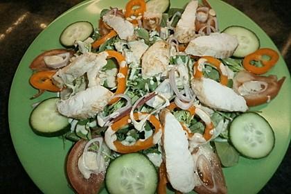 Bunter Salat mit Putenbruststreifen 14