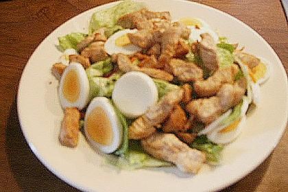 Bunter Salat mit Putenbruststreifen 16
