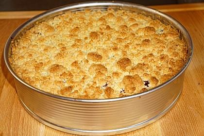 Kirsch-Streuselkuchen 16