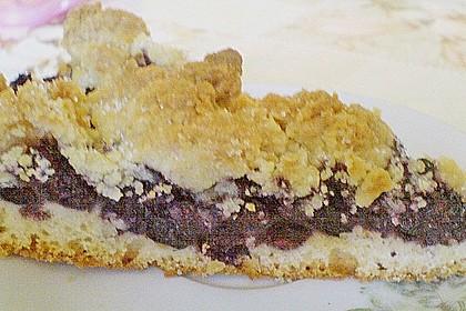 Kirsch-Streuselkuchen 96