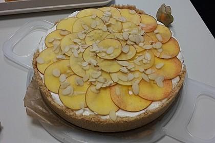 Summer Sun Cheesecake 9
