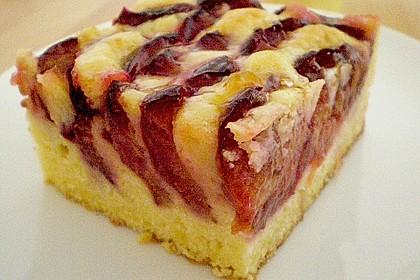 Marillenkuchen 3