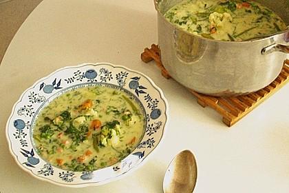 Finnische Suppe Kesäkeitto 1