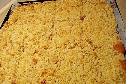 Apfelkuchen mit Streuseln 3