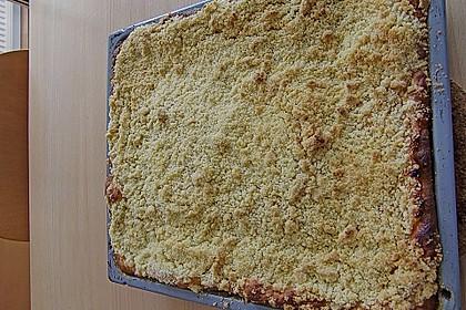 Apfelkuchen mit Streuseln 13