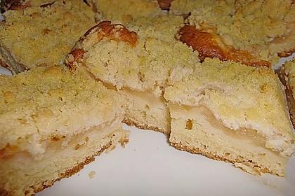 Apfelkuchen mit Streuseln 6