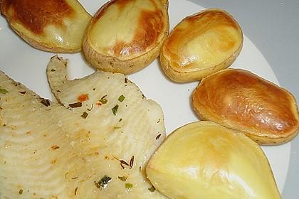 Ballon - Kartoffeln 15