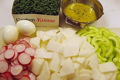 Rettich - Radieschen - Salat mit Senf - Dressing 1
