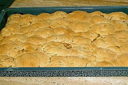 Gedeckter Obstblechkuchen 7