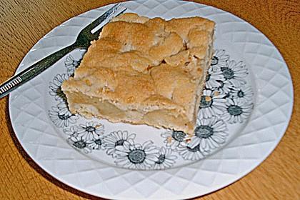 Gedeckter Obstblechkuchen 4