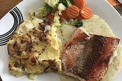 Das beste Kartoffelgratin 164