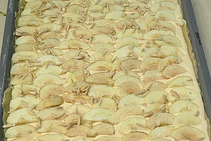Apfel - Käsekuchen vom Blech 27