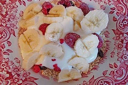 Obst - Joghurt - Müsli 8
